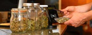 Marijuana Guidelines Blog Graphic.jpg